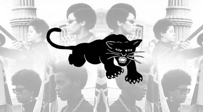 Die echten Black Panthers!